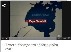 Climate change threatens polar bears_CBC 1999