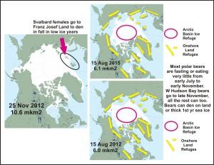 Sea ice and summer refuges for polar bears_17 Aug 2015