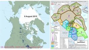 Sea ice at 2015 Aug 8 vs pb status map_Aug 9 2015 sm
