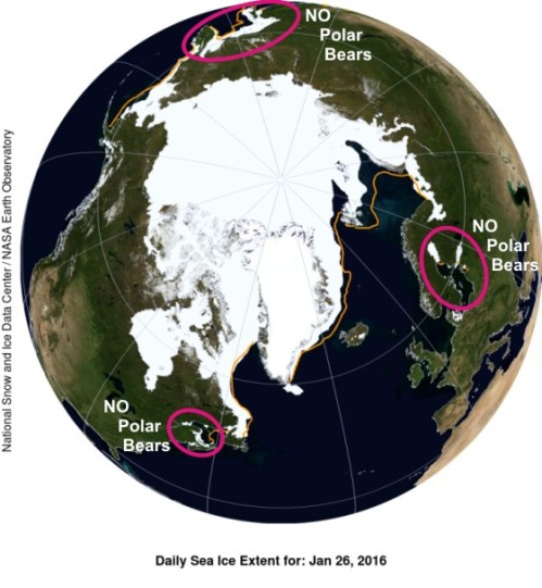 Polar bear habitat at 26 Jan 2016_no bears marked_PolarBearScience_sm