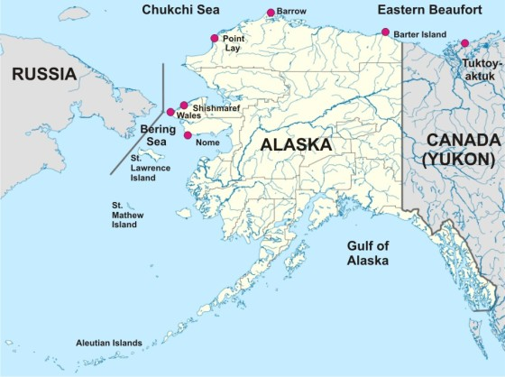 Chukchi Beaufort locations_PolarBearScience_sm