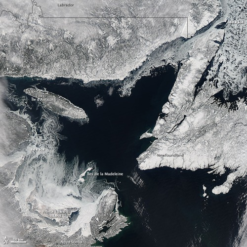 Gulf of St Lawrence ice_Feb 20 2013_NASA EarthObservatory_sm w labels
