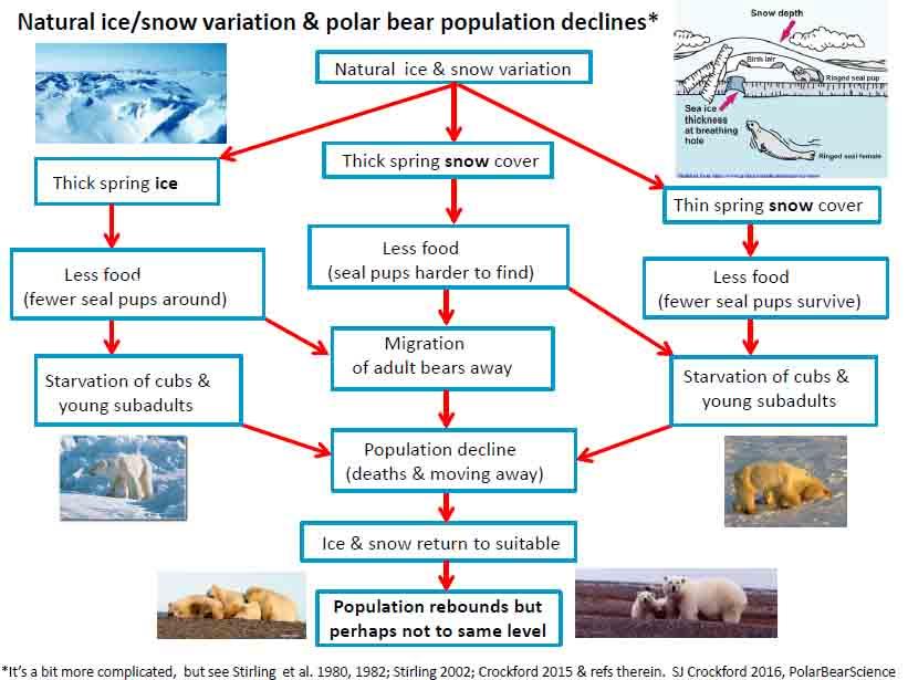 Natural ice_snow variation and polar bears_model_PolarBearScienceFeb 20 2016