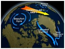 Beaufort Gyre_Athropolis