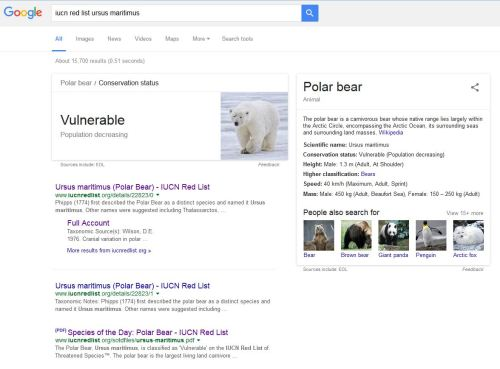 Google search_polar bear red list_11 May 2016