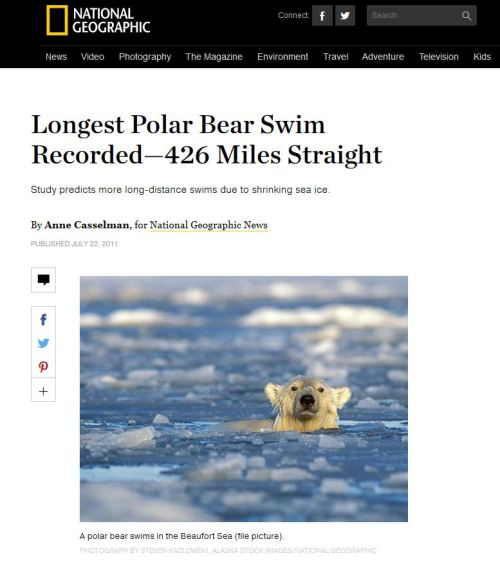 National Geographic swimming polar bear_snapshot_July22_2011