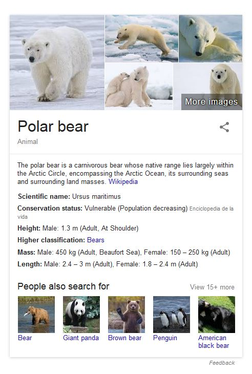 EOL_polar bear_at 16 Jun 2016 listed by Google