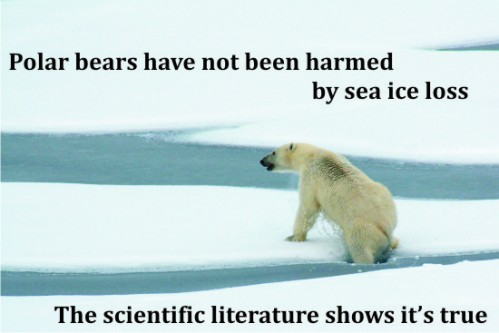 USGS w_polarbearscience_caption 2016