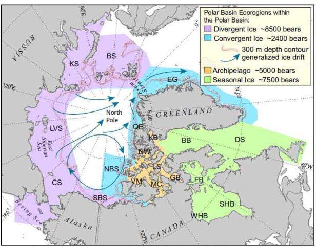 Amstrup et al 2011 fig 1 ecoregions_sm