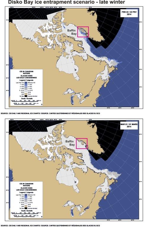 Disko Bay_ice entrapment_PolarBearScience_13 Aug 2016