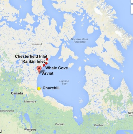 Arviat with Churchill_Rankin and Whale Cove_PolarBearScience