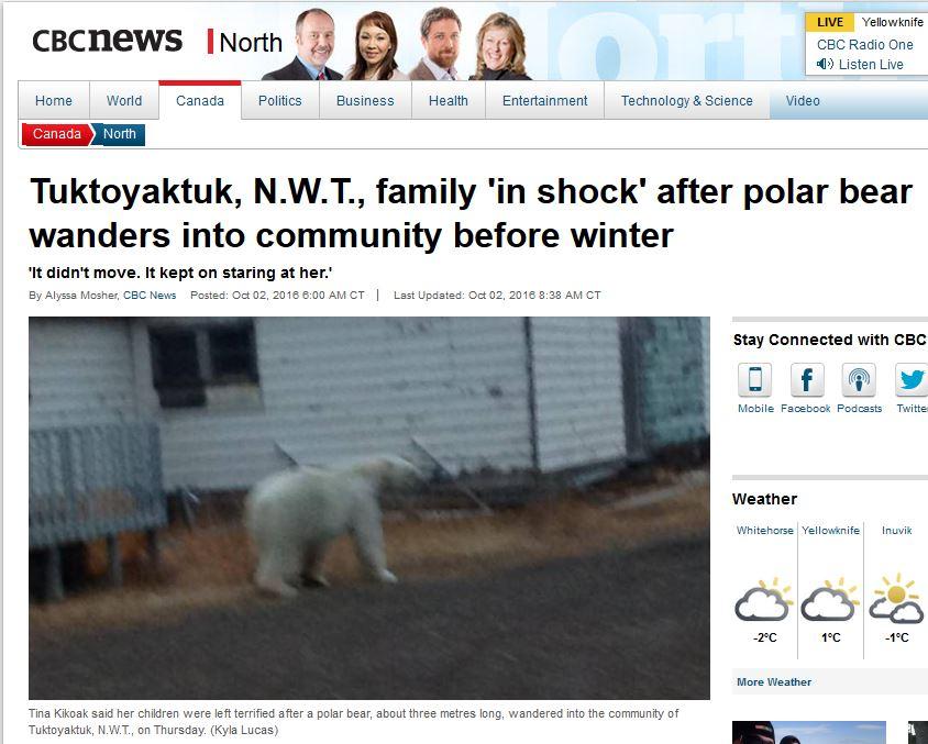 tuk-polar-bear-sighting-sept-29_cbc-oct-1-2016-headline