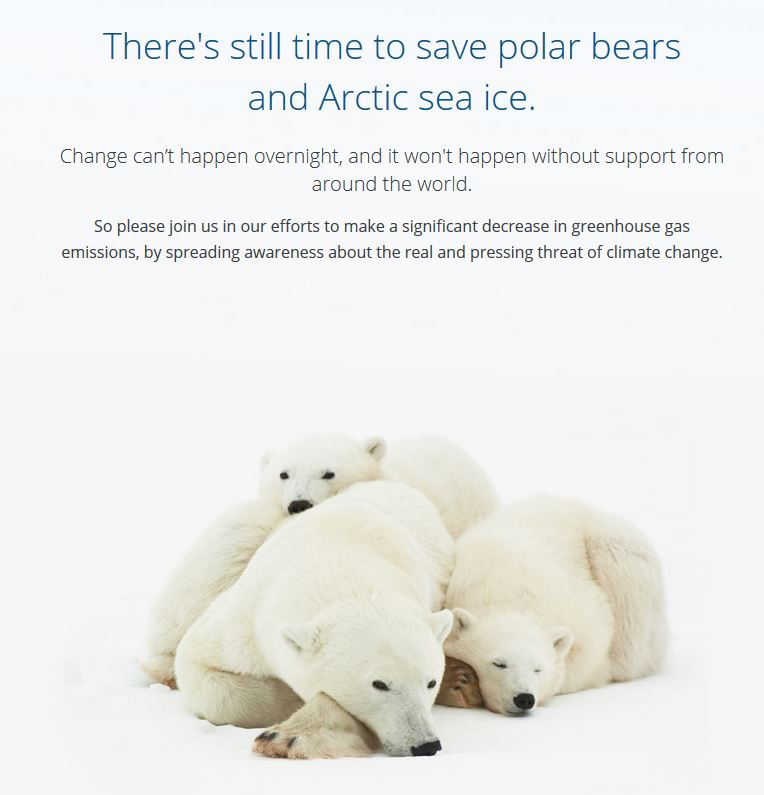 can we save the polar bears Can ninjas save polar bears kids offer drawings, ideas (photos) one way we can help polar bears is to stop polluting because if we keep polluting.