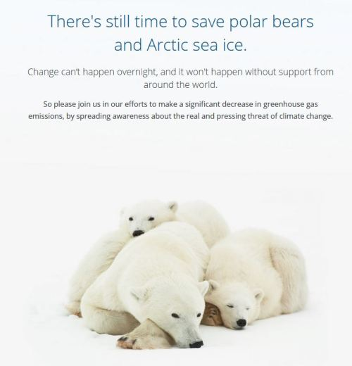 Sir David Attenborough should check his facts on polar bears     A warming trend leaves polar bears less ice for hunting seals  Credit Michael Kirby Smith for The New York Times