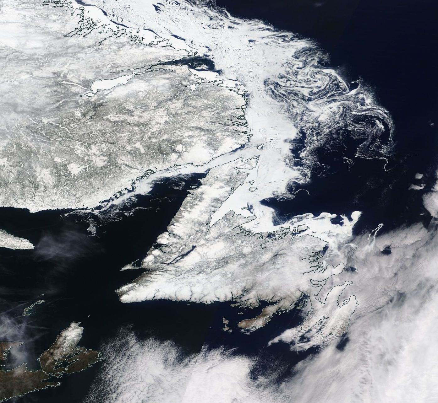 Newfoundland Labrador sea ice 19 April 2017 NASA Worldview