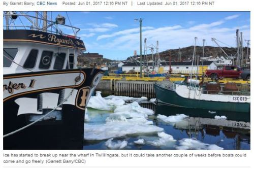 Twillingate fisherman trapped by ice CBC 1 June 2017