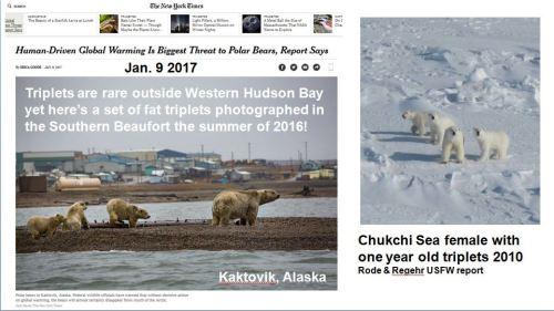 Crockford 2017_Slide 15 screencap