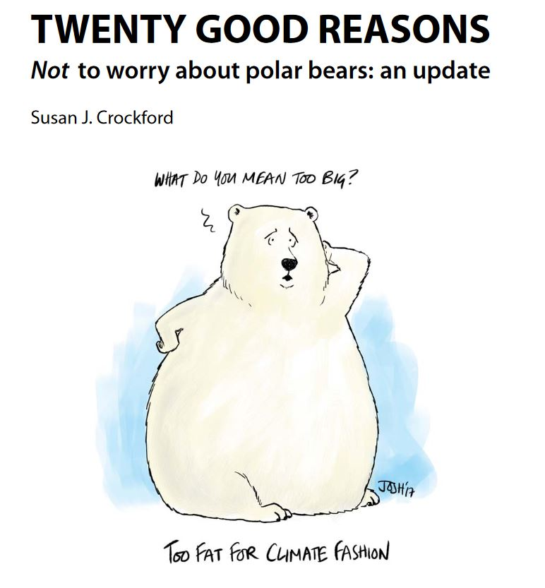 Cover image_Twenty Reasons_polarbearscience