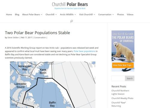 Churchill polar bears blog headline 17 Feb 2017