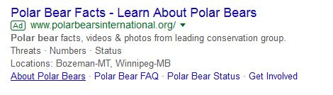 PBI Google ad_7 Jan 2018 learn about polar bears