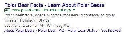 PBI Google ad_7 Jan 2018 learn about polar bears