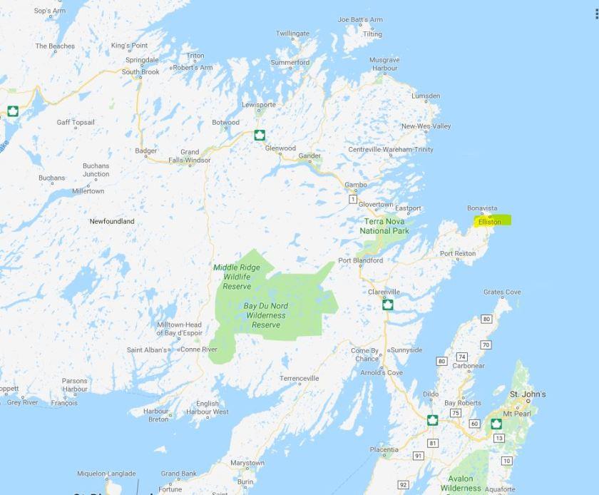 Elliston Bonavista Peninsula Newfoundland location Google maps
