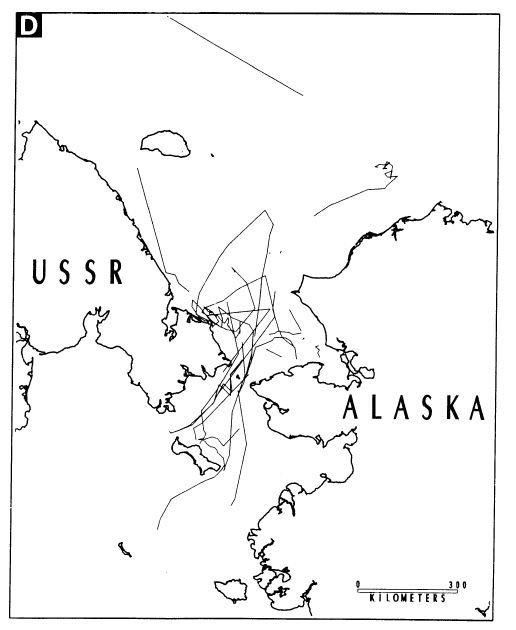 Garner et al 1990 Chukchi and Bering sea PBs Fig 3D Jan-March