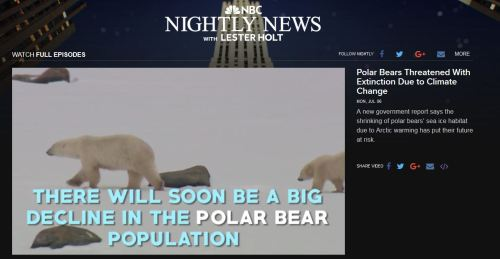 NBC 2015_3 there will soon be a big decline in polar bear numbers snap