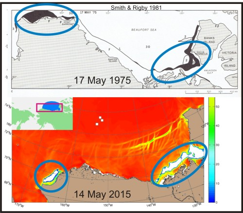 Bathurst and W Beaufort polynyas_1975 vs 2015_PolarBearScience