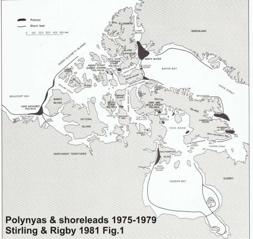 Polynyas and shore leads_Smith and Rigby 1981