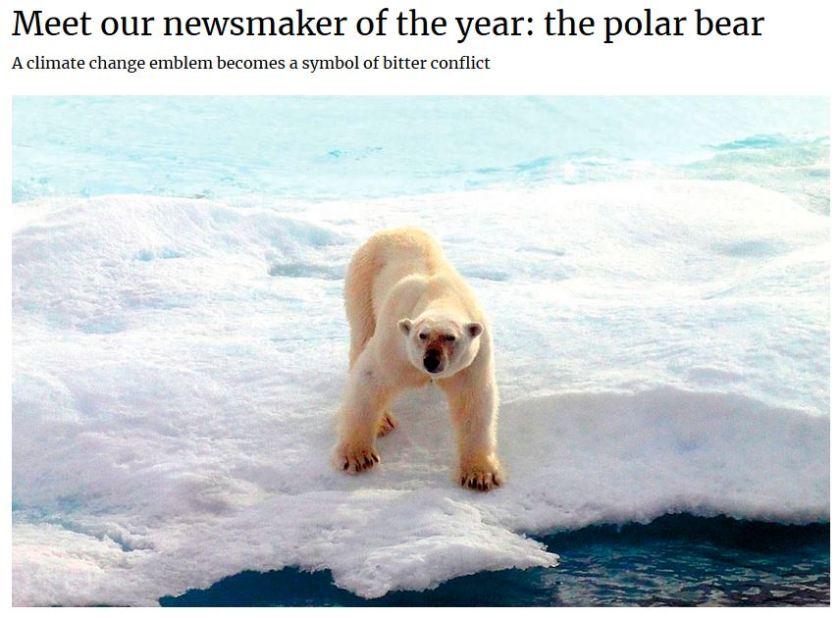 Polar bear newsmake of the year_2 Jan 2019 Nunatsiaq News