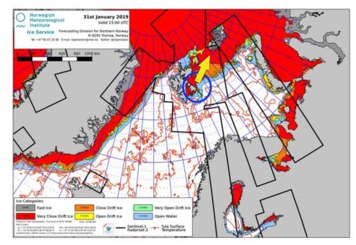 Derocher 2019 Jan 31 on Svalbard denning areas marked