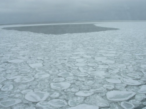 Pancake ice in the Bering Sea from the NOAA Ship Oscar Dyson_02