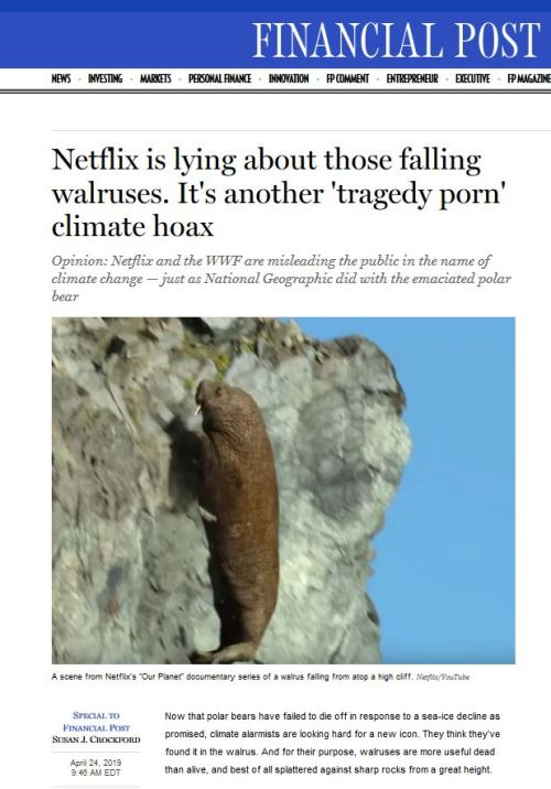 Netflix is lying_FP headline 24 April 2019
