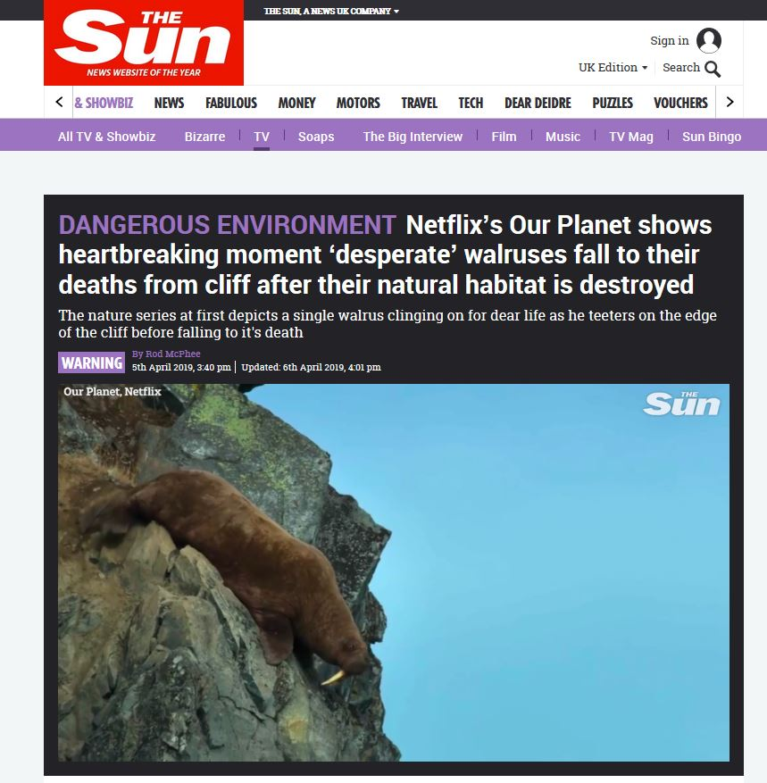 Walrus plunging cliff_The Sun headline 5 April 2019