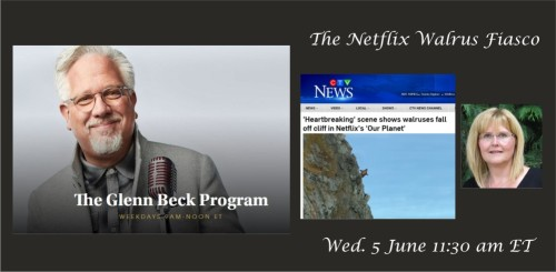 Beck interview blog post header 5 June 2019 Walrus fiasco