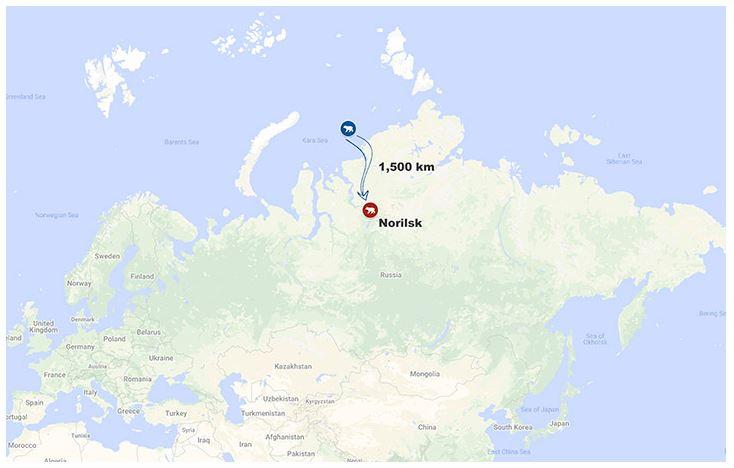 Norilsk starving bear 17 June 2019 Siberian Times map