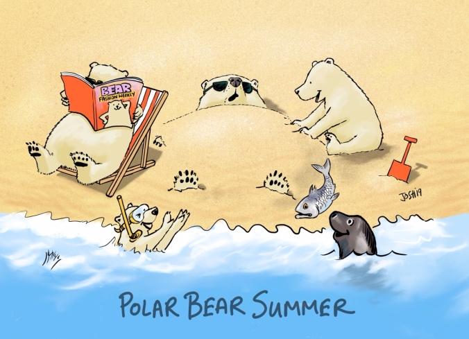 Polar bear summer 11 July 2019_FINAL