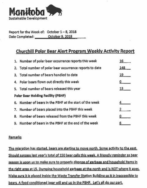 Churchill problem bears_week 14_2018 Oct 1-8
