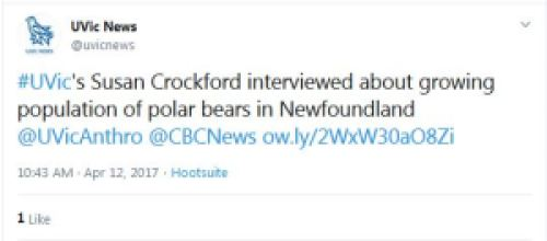 UVicNews tweet about Crockford CBC polar bear interview 12 April 2017