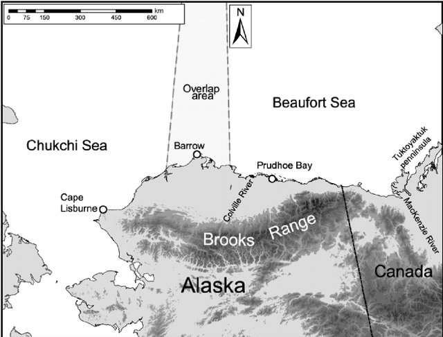 Beaufort Chukchi Sea polar-bear distribution from Cronin et al 2006