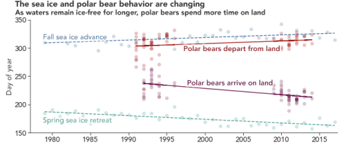Laidre et al 2020 bear_ice_reatreat_chart_2017