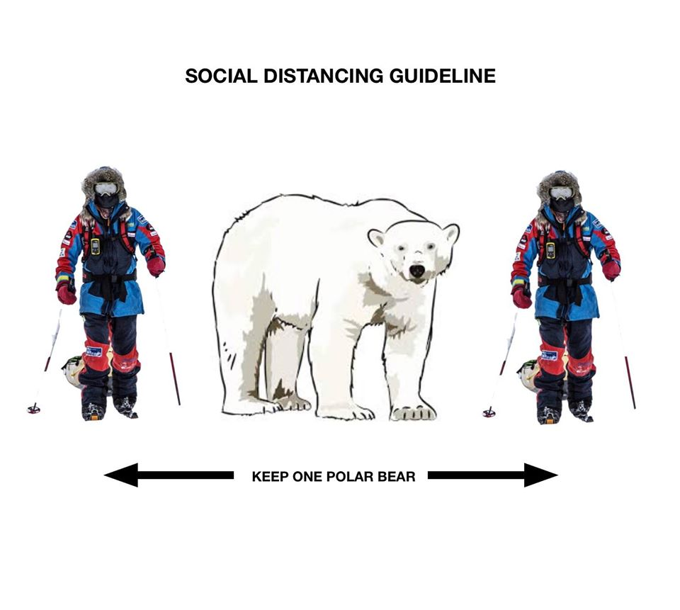 Svalbard social distancing_keep one polar bear away_icepeople 3 April 2020