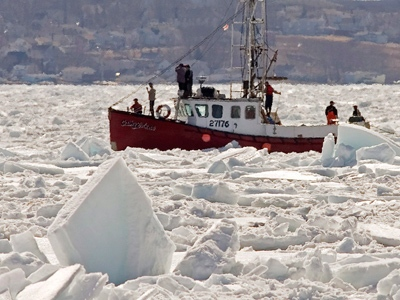 CTV news_Cathy Erlene sealer heavy ice off North Sydney_Saturday March 28 2009