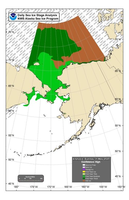 Chukchi Bering sea ice 2020 May 31_stage of development lg