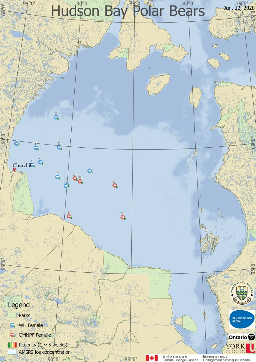 Dercocher June 12 2020 tracking map Hudson Bay