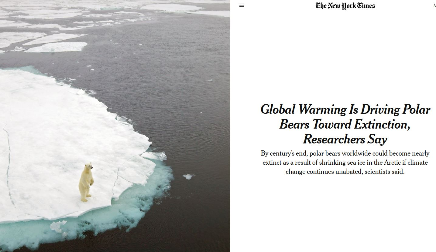 New York Times headline _climate change pushing pbs to extinction_20 July 2020