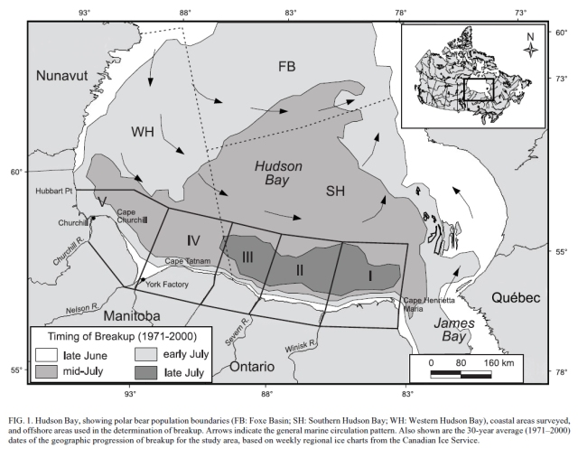 Stirling et al 2004 HB ice and boundaries