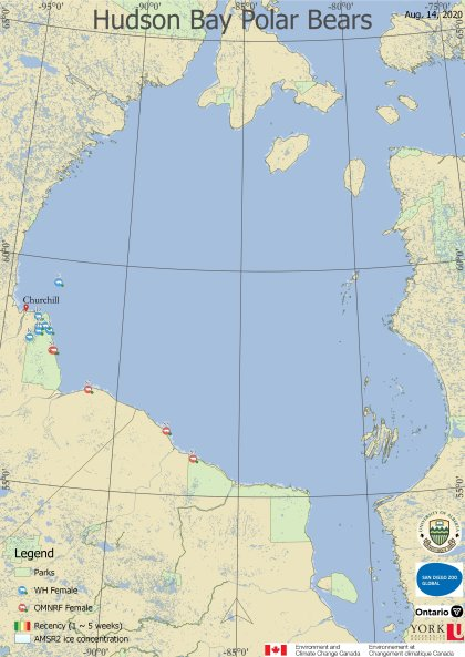 Derocher 2020 WHB tracking map 14 Aug_1 bear still on the ice